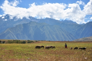 sacred_valley-127